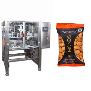 Continuous Motion Packing Machine
